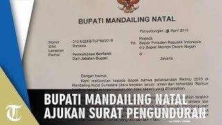 Bupati Mandailing Natal Mundur karena Jokowi Kalah, Mendagri: Alasannya Tidak Lazim