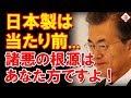 日本が国連パネルから指摘された?問題なのは横流し3兄弟です!!