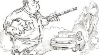 Знак шипы абсурд и тупость нашего правительства