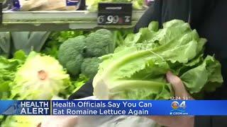 Romaine Lettuce Safe To Eat