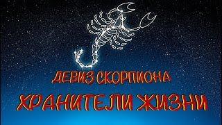 Девиз знака Зодиака Скорпион: Хранители Жизни