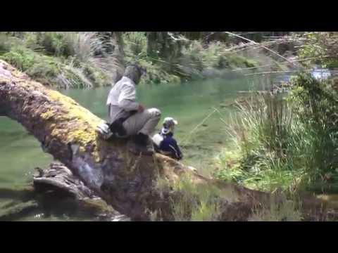 Paloma River Dry Fly Fishing