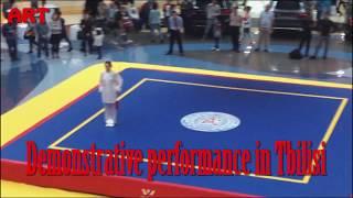 Показательные выступление в Тбилиси по кунг фу/Demonstrative performance in Tbilisi on kung fu