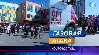 12 детей пострадали в 37-й школе Великого Новгорода от распыленного газа