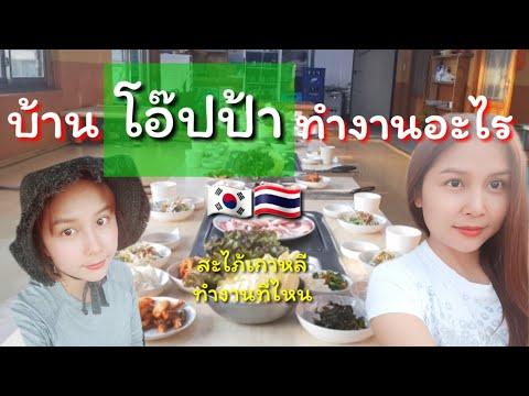 เป็นเมียคนเกาหลี  | Ep.39 |บรรยากาศการทำงานในร้านอาหาร |คำศัพท์เกาหลี|สะใภ้เกาหลี by Korean |