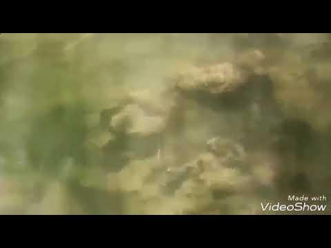Музыка для всех- Красивая Музыка  Народный Музыкальный Инструмент Азербайджана! 352 x 6404651