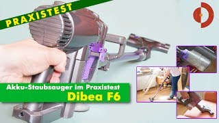 Dibea F6 - Preiswerter Akkustaubsauger im Test und Vergleich