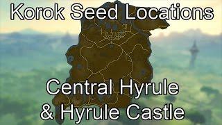 Korok Seed Guide - Central Hyrule & Hyrule Castle