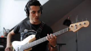 If You Wanna Steal Anti-Flag Bass Cover