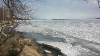 Ice Report Feb 26 2017  Cookss Bay
