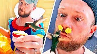 I Became A Human Hummingbird Feeder