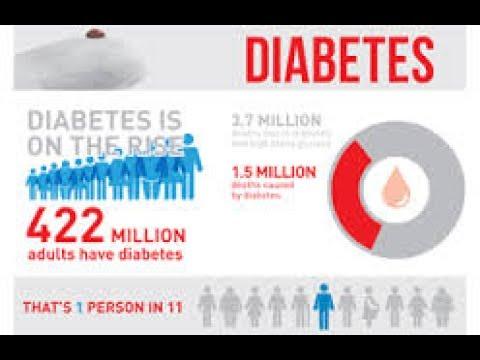 Ernährungsempfehlungen für Adipositas und Typ-2-Diabetes Vasjukova