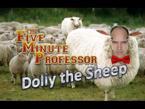 FMP - Dolly the Sheep
