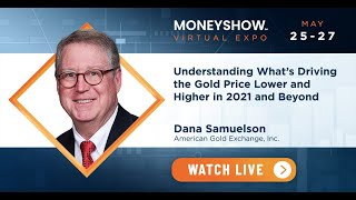 Understanding What's Driving the Gold Price Lower and Higher in 2021 and Beyond