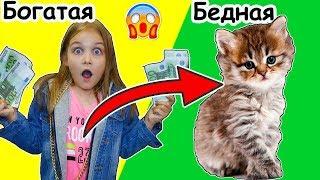 Богатая превратилась в бедного котёнка