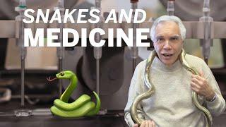 Dr. Joe Schwarcz: Snakes and medicine