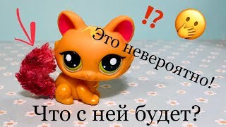 LPS Эксперимент / ЧТО БУДЕТ С ЭТОЙ кошкой Lps? / Littlest pet shop
