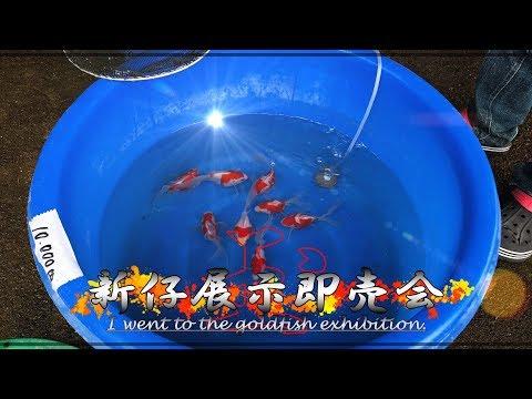 【越後玉サバ】H30年9月30日「玉フェス」へ行って来た!