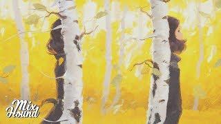 Chillstep | Andrew Applepie, Dario Lessing - In Between (AK Remix)