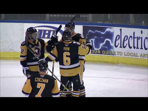 IceHogs vs. Penguins   Feb. 24, 2019