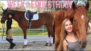 WEEK IN THE LIFE OF AN EVERY DAY EQUESTRIAN!