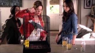 Pretty Little Liars 4x02 - Aria & Spencer Meet Tippy