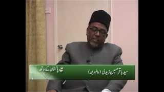 JeayPakistan kay Saath Syed Baqar Zaidi Jaffaria Alliance Part 2