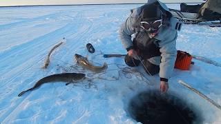 Зимние костюмы для рыбалки нова тур в спб