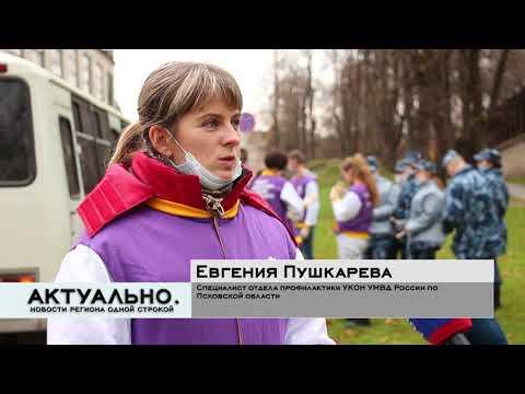 Актуально Псков / 21.10.2021