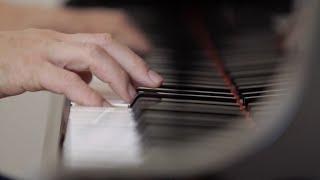 L.Schelepak - Musicvideo