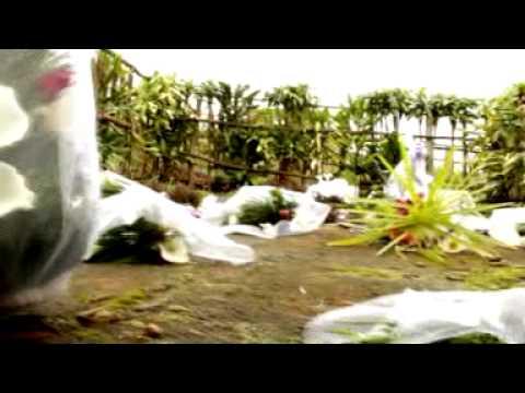 Kirwa by JDD (Fayzo Pro)(rwandavideo.com).mpg