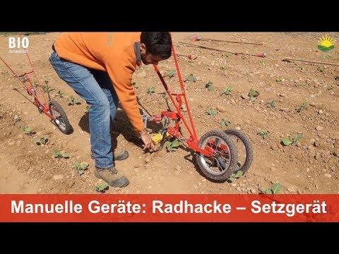 Manuelle Geräte für kleinere Gemüsebaubetriebe: Radhacke und Setzgerät von Terrateck