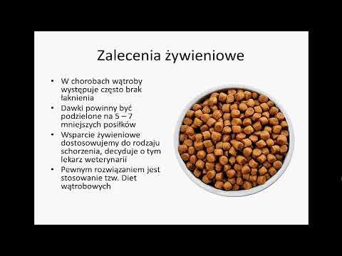 A pinworm férgek tünetei és kezelése