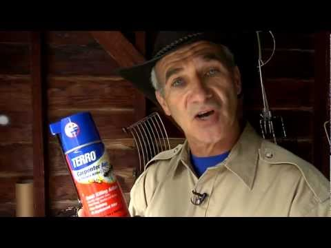 Carpenter Ant and Termite Control video thumbnail