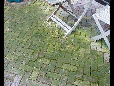 HG Algen- und Grünbelag Entferner - Grünbelag schnell entfernen