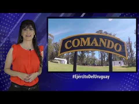 Ejército Del Uruguay Noticias - Resumen de Noticias 24