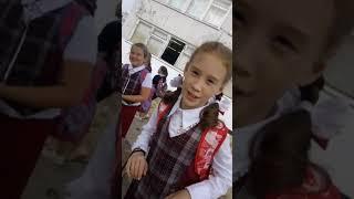 Трансляция видео