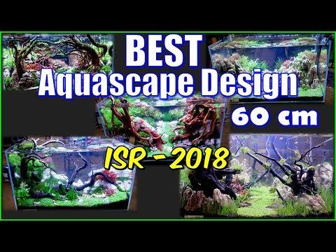mp4 Design Aquascape, download Design Aquascape video klip Design Aquascape