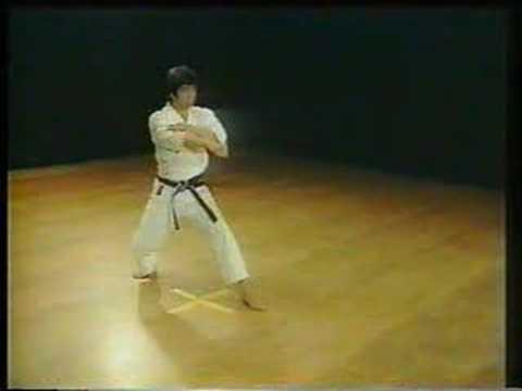 Nijushiho - Shotokan Karate