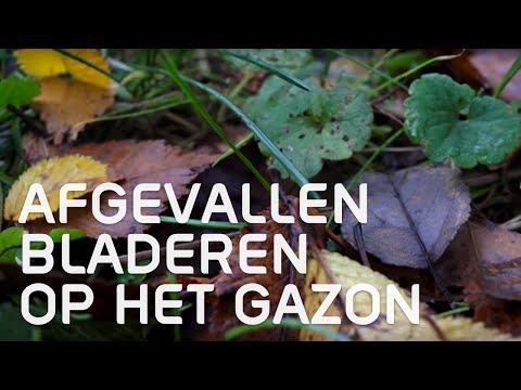 Mijn Tuin App : Video s mijntuin