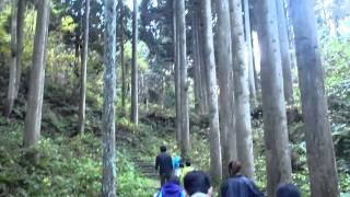 ハイキングどかどか歩いて森林浴~頼成の森編~