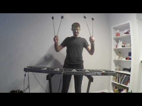 A short video of Dylan Di Mauro playing a variety of percussion instruments on a malletKat.