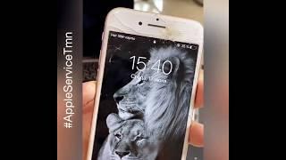 Заменить стекло iPhone 7 Тюмень