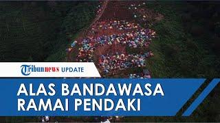 Viral Foto Bukit Alas Bandawasa Dipadati Pengunjung saat PSBB, Kini Ditutup karena Tidak Berizin