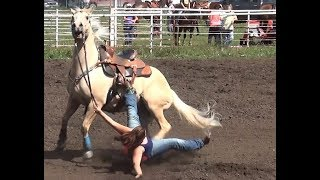 Barrel Racing Series #5 From McHenry County Saddle Club