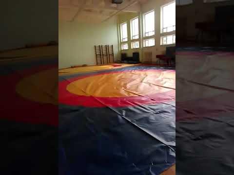 Покрышка бля борцовского ковра, трехцветная от SportPanda