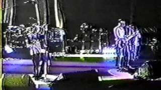 "311 - ""Paradise"" (live) Redrocks 6-15-1996"