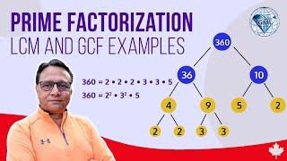 Factors Multiples and Prime Numbers Test Practice