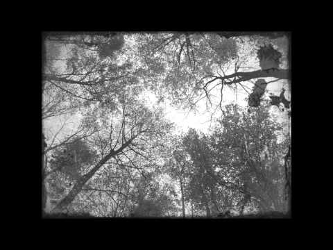 Lyrics Placebo ~ Centrefolds