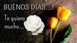 Descargar Mp3 De Video De Buenos Dias Con Las Imagen De Flores